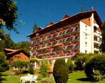Hotel Wengener Hof - Wengen
