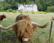 The Inch Hotel - Fort Augustus