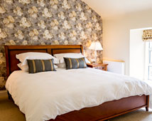 The Park Guest House - Tralee