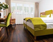 Hotel Rheingold - Galingen