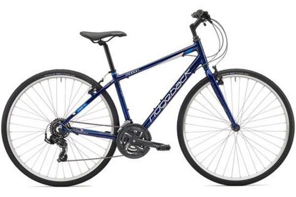 Ridgeback Hybrid rental bike