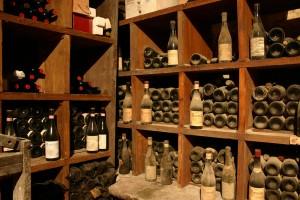 walking in italy, walking holidays italy, walking in barolo, barolo vineyard