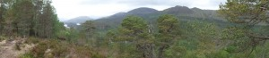 Panormic View between Cannich and Glen Affric