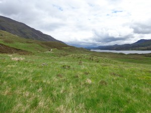 Scenic view back to River Affric