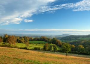 Cotswold Countryside (2)