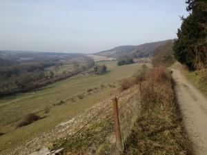 Pilgrim's Way, Denbies Hillside