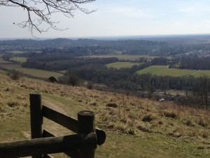 View to Dorking