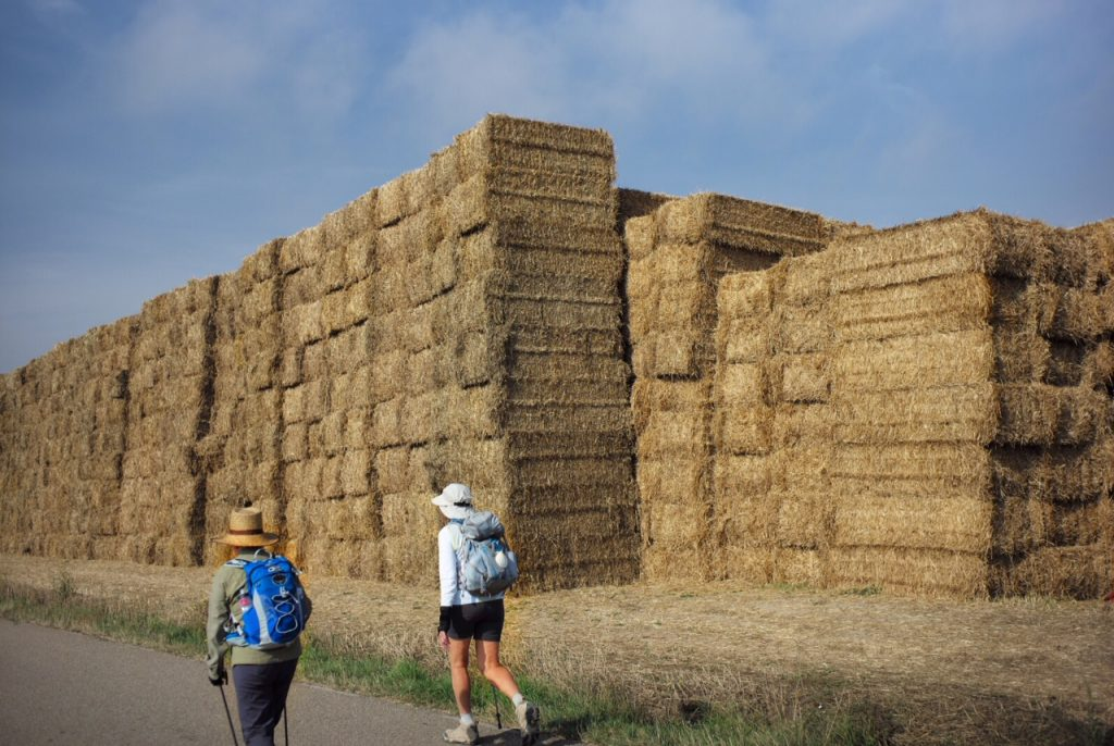 Pilgrims walk past haystacks on the Camino de Santiago