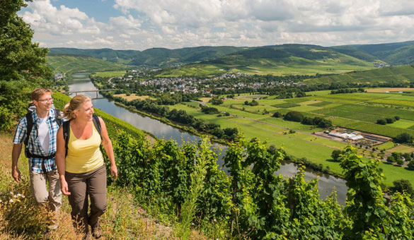 Walking the Moselle Valley Wine Trail