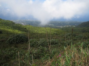 Looking down on Basse Terre