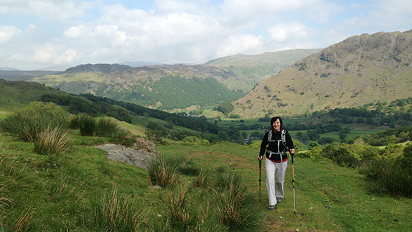 Seatoller Fell to Borrowdale (11)