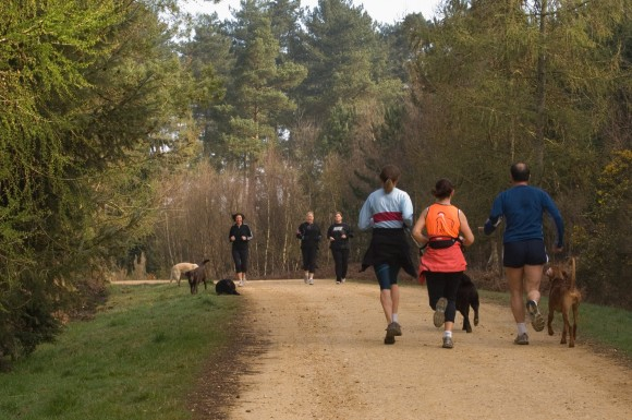 1059619 - running on a forest road - credit Forestry Commission Crown Copyright