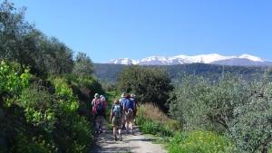 Crete Walking