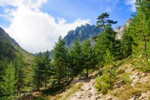 ss_1500_restonica-gorge-walk