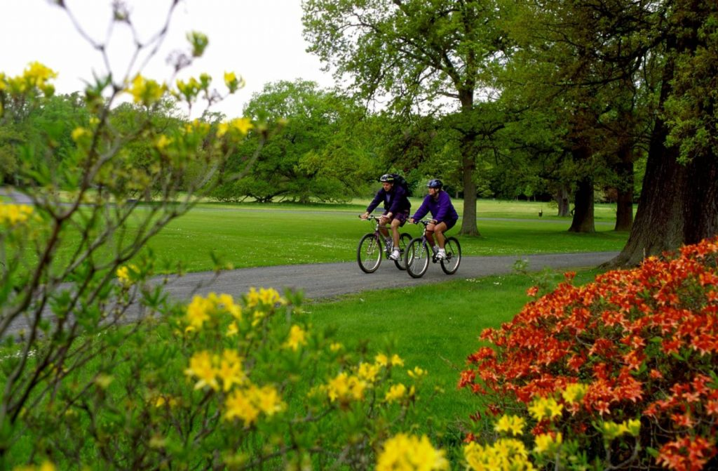 Five great long-distance cycle routes in Scotland