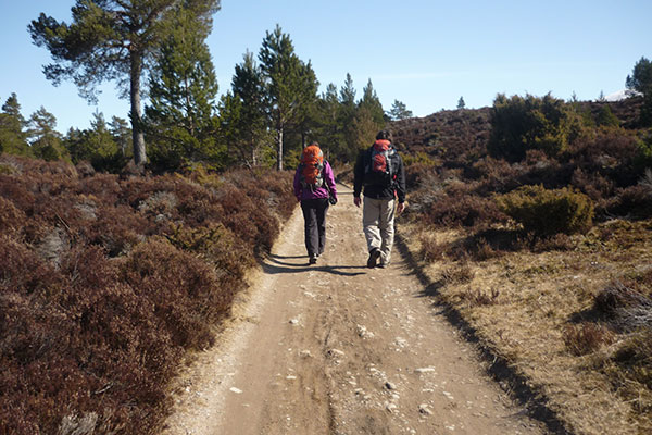 Cairngorms-trails