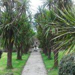 Tregrehan Gardens