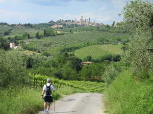 Country Road to San Gimignano