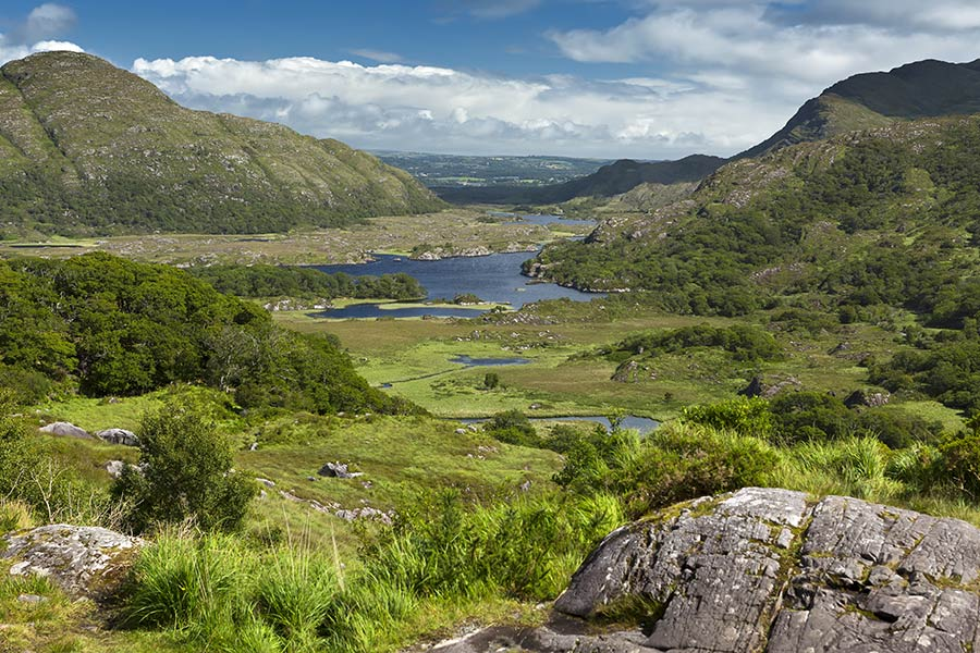 Views over Killarney National Park