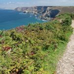 Coastal Path near St Agnes