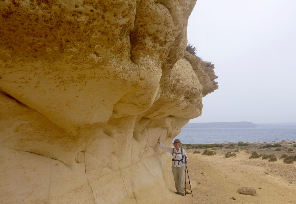 The Saltpan Coast