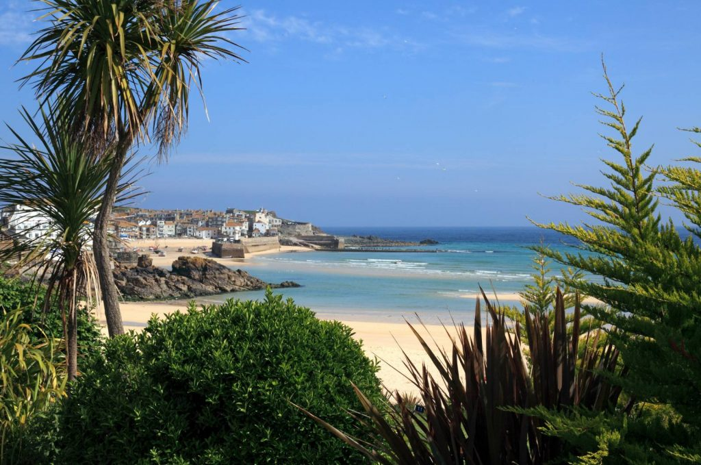 The Town of St. Ives