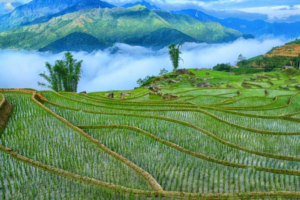 Exploring North Vietnam