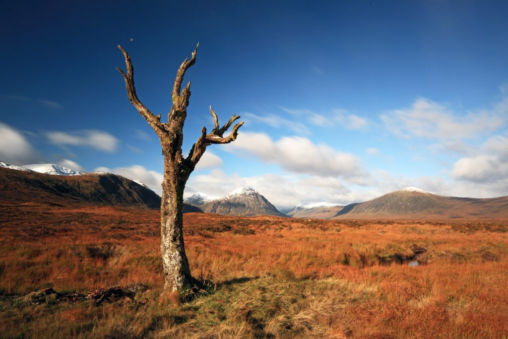 The Wild and rugged landscape of Rannoch Moor.
