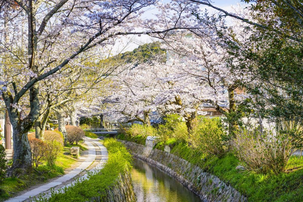 The Philosopher's Path in Kyoto.