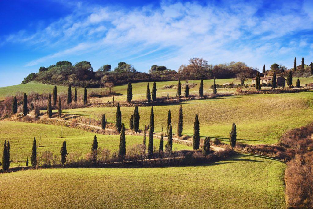 Cypress road near La Foce, Tuscany