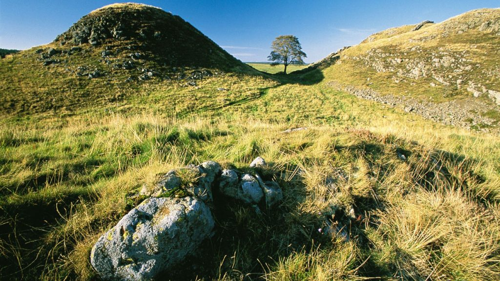 Sycamore Gap along Hadrian's Wall.
