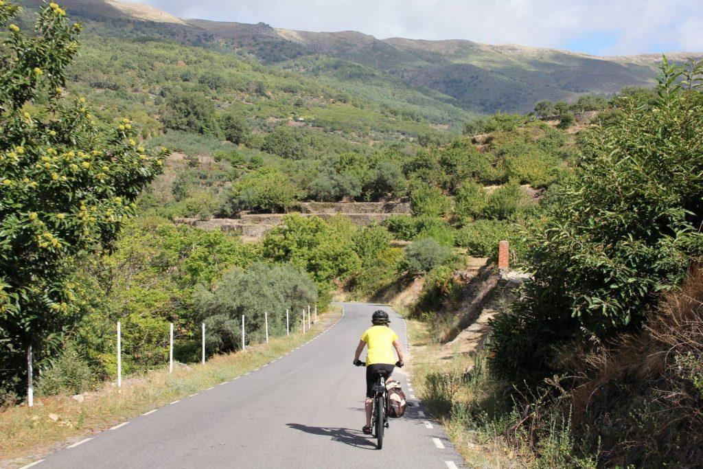 Cyclist near Jarandilla de la Vera