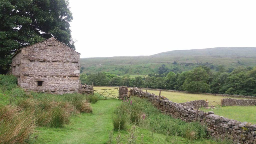 Paths wind through Yorkshire on the Coast to coast walking trip
