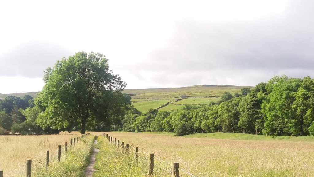 Paths through the Yorkshire Dales National Park