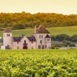 Château and vineyards, Burgundy