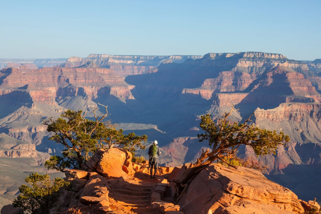 Wide shot of the Grand Canyon with rock formations stretching to the horizon