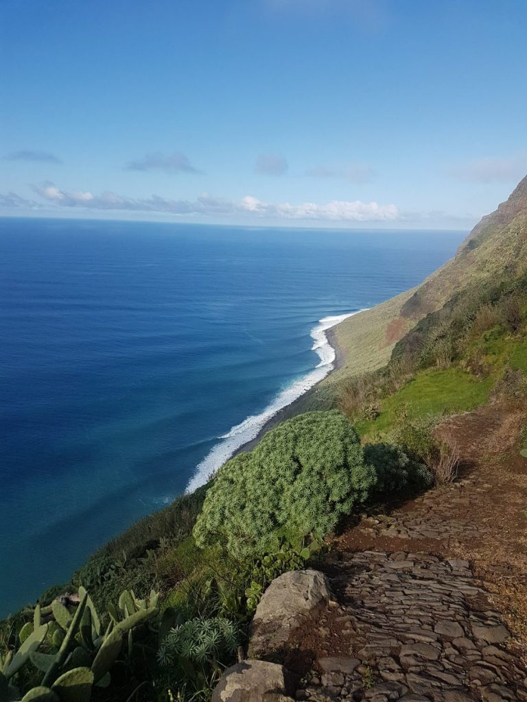 Madeira beach view, with vegetation and steep cliffs plunging into the clear blue sea
