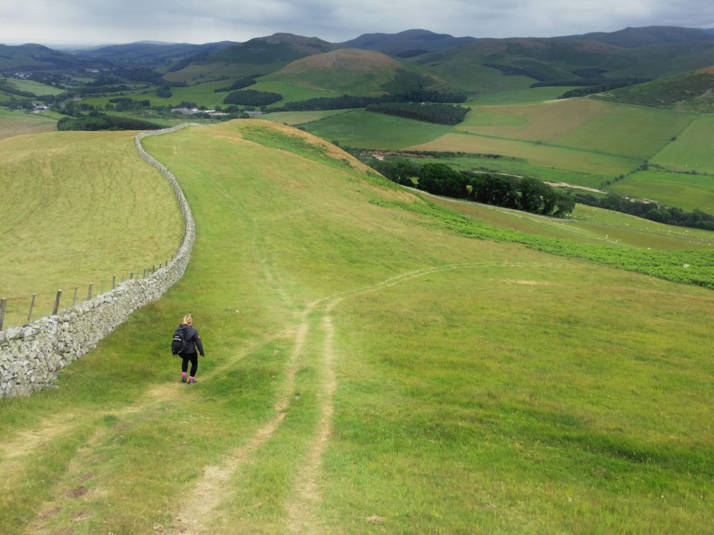 walker on a path, surrounded by wide open fields on St Cuthbert's Way
