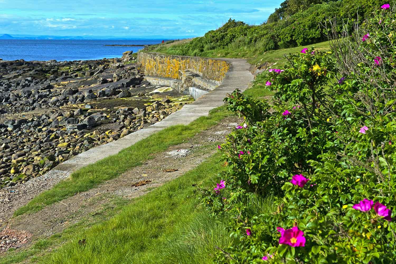 Fife Coastal Path- 5 reasons to visit