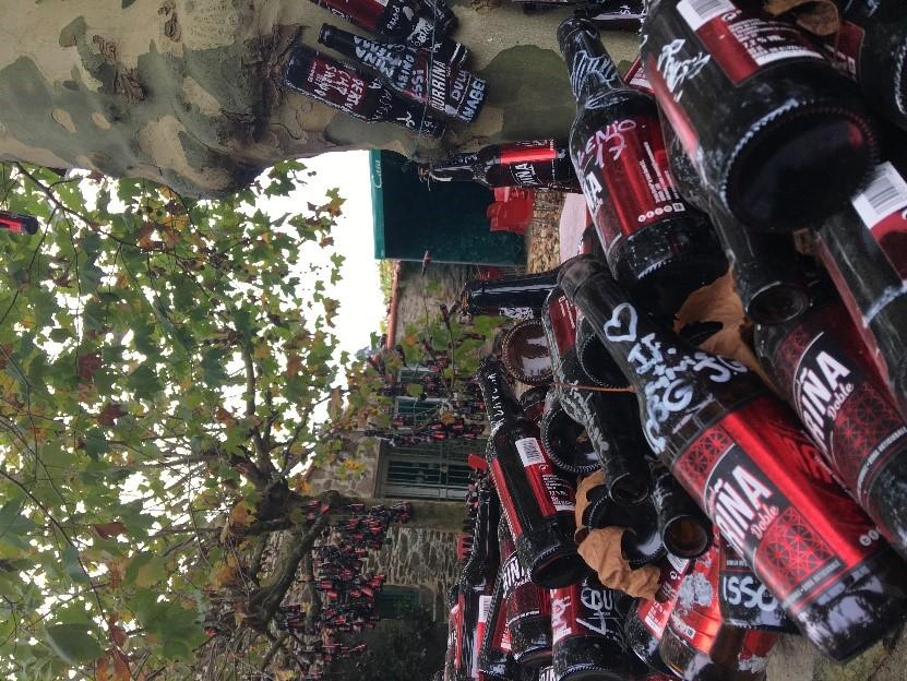 Beer Bottles Camino