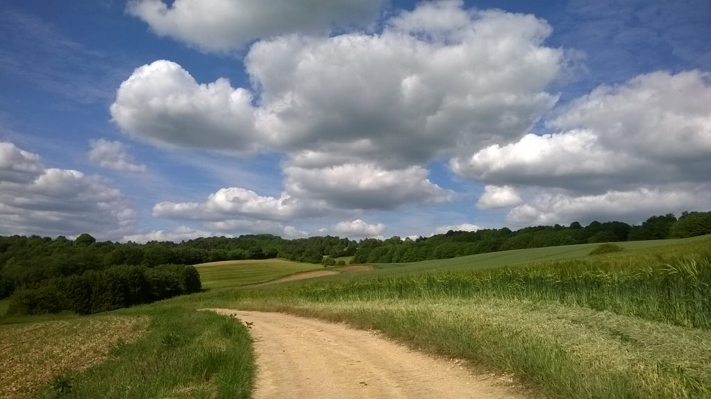 white path leads through green countryside in the Cotswolds