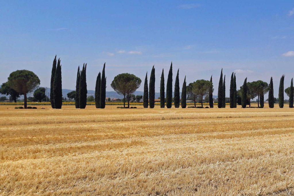 Umbrian scenery