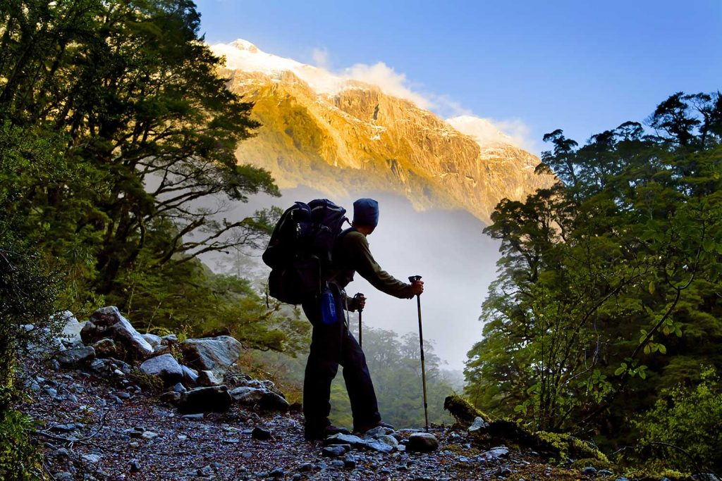 Milford track hiker