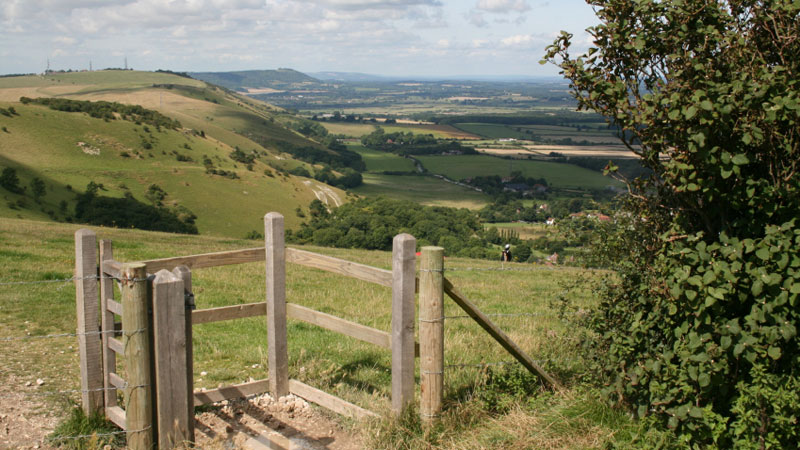 Looking across the South Downs from the Ridgeway