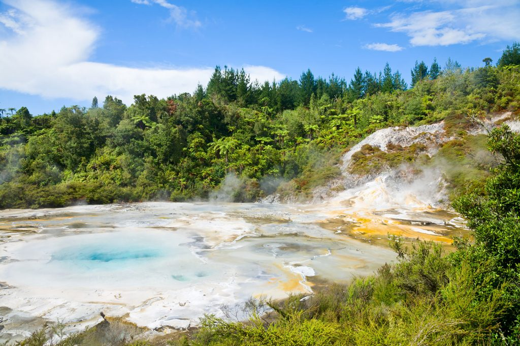 Geyserland National Park
