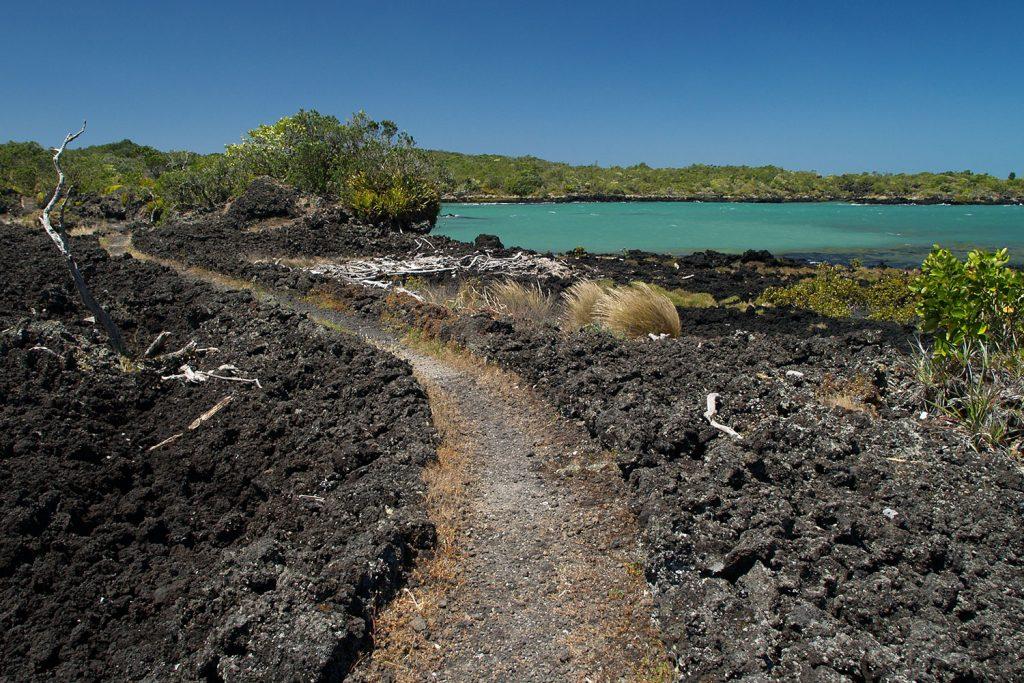 Path on Rangitoto Island