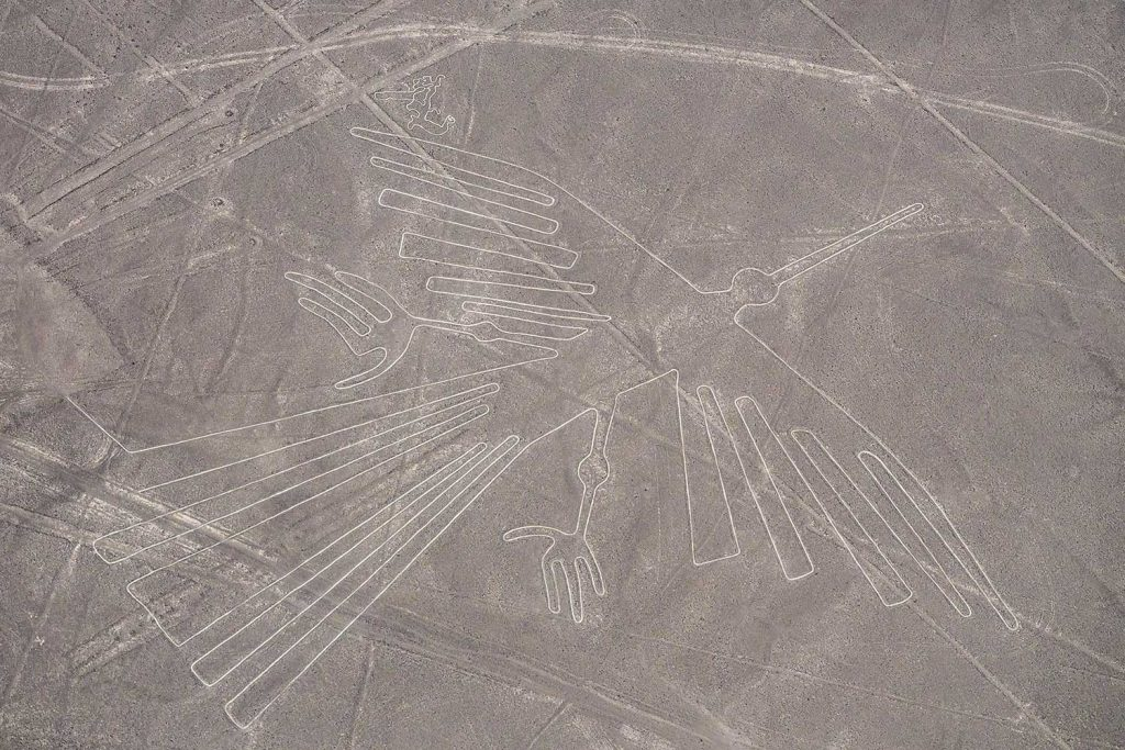 Nazca Lines The Condor