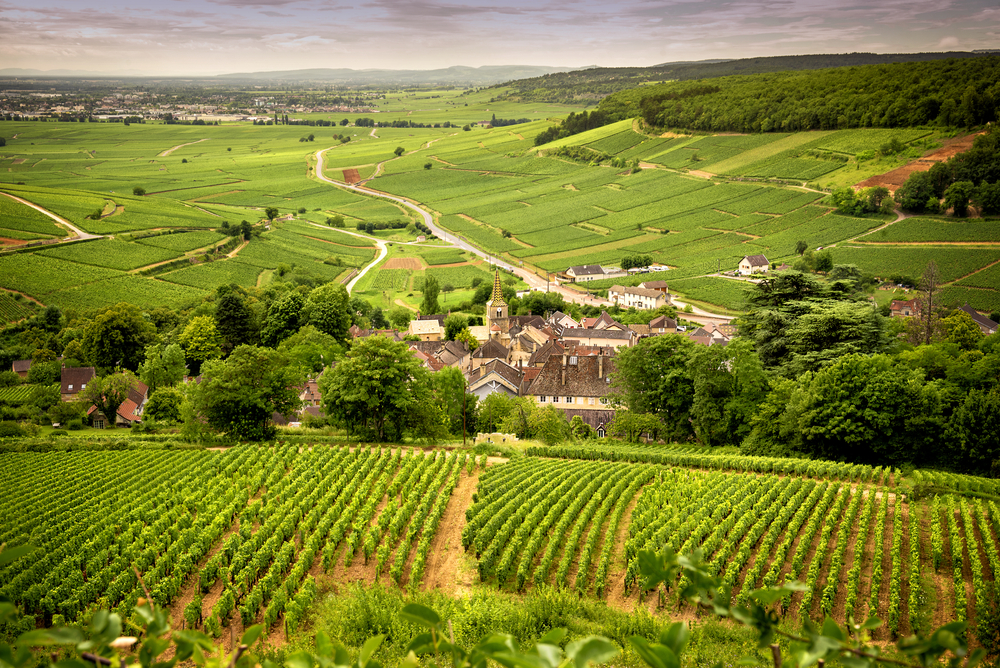 Typical Burgundy Scenery