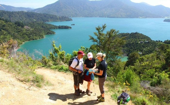 Hikers on the Queen Charlotte Track, New Zealand